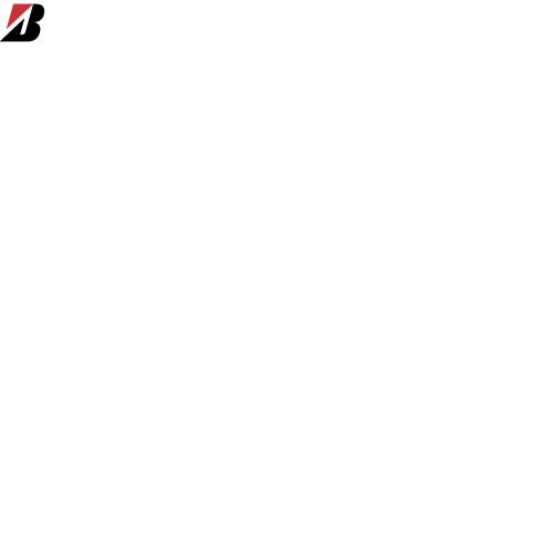 Официальный представитель Bridgestone