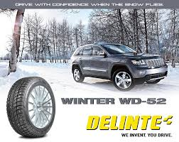 Резина Delinte Winter WD52