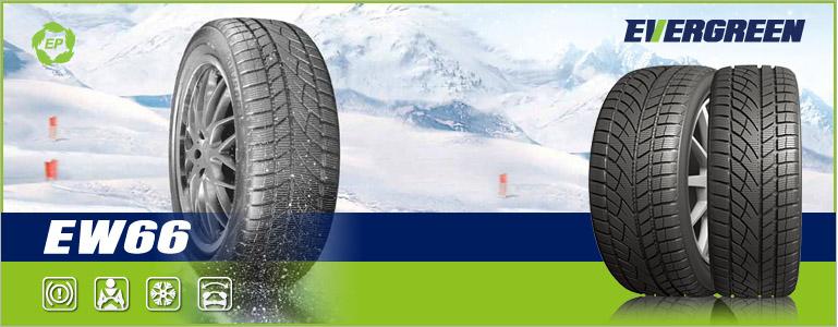 Автомобильная резина Evergreen EW66