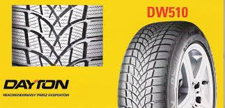 Зимние шины Dayton DW510